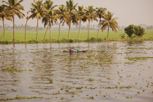 Boot auf den Backwaters