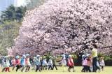 Nationalgarten in Tokio, ©JNTO