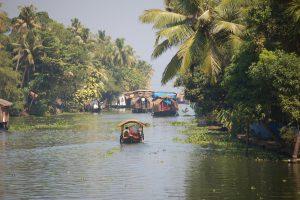 Bilderbuchlandschaft in den Backwaters