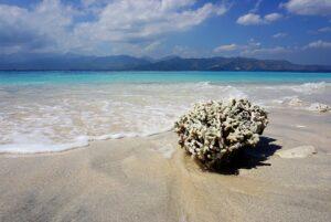 Strand auf Gili Meno, Indonesien, mit Koralle